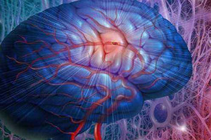 癫痫病的形成有哪些病因