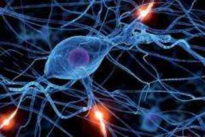 常见的癫痫疾病的病因都有哪些呢