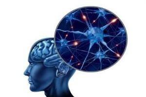 原发性的癫痫病会不会有遗传呢